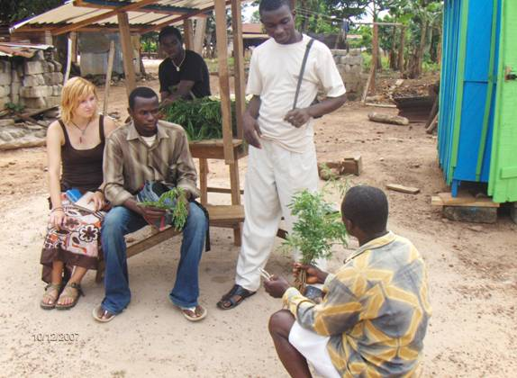 rural development in ghana Groundswell international supports sustainable rural development and the scaling of agroecology in ghana and elsewhere in west africa.
