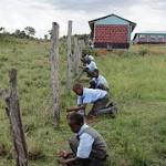 EYAC planting trees